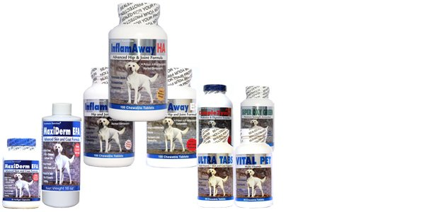 Next Generation Supplements For Your Dog